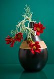 Round ceramic vase with red flowers on green Stock Photos