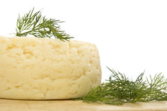 Round cheese. Royalty Free Stock Image