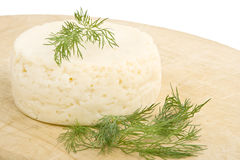 Round cheese. Royalty Free Stock Images