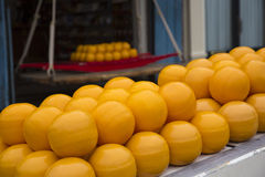 Round cheese Edam - Holland cheese. Holland cheese (Edam) in the cheese market royalty free stock images