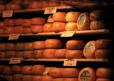 Round cheese heads on the shelves royalty free stock image