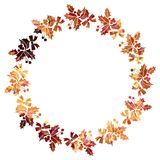 Round Christmas frame with holly berries silhouettes. Royalty Free Stock Images