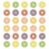 Round citrus slices isolated objects simple on a white background multicolored vector green red fruit list. Round citrus slices isolated objects simple on a vector illustration