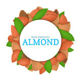 Round colored frame composed of almond nut. Vector card illustration. Circle nuts , almonds fruit in the shell, whole Stock Image