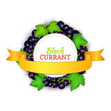 Round colored frame composed of black currant with gold ribbon. Vector card illustration. Fruit label. Circle currant. Berries label fruit and leaves for Royalty Free Stock Photography