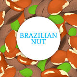Round colored frame composed of brazilian nut. Vector card illustration. Circle Nuts , brazilnut fruit in the shell Stock Photo