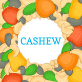 Round colored frame composed of cashew. Vector card illustration. Circle Nuts ,  fruit in the shell, whole, shelled Royalty Free Stock Photo