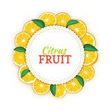 Round colored frame composed of delicious tropical orange fruit. Vector card illustration. Circle citrus oranges frame. Ripe fresh fruits appetizing looking Royalty Free Stock Images