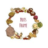 Round colored frame composed of different nuts. Vector illustration Royalty Free Stock Image