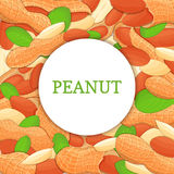 Round Colored Frame Composed Of Peanut Nut. Vector Card Illustration. Circle Nuts , Groundnut Fruit In The Shell, Whole