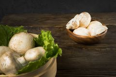 Round container with lettuce leaves and mushrooms on wooden table. Round container with lettuce leaves and mushrooms on table Stock Image