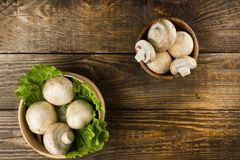 Round container with lettuce leaves and mushrooms on wooden table. Top view. Round container with lettuce leaves and mushrooms on wooden table Royalty Free Stock Image