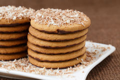 Round cookies with chocolate Royalty Free Stock Photos