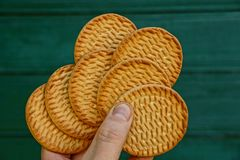 Round cookies in hand against the green wooden wall royalty free stock photos