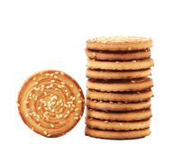 Round cookies with sesame seeds. Stock Photos