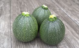 Round courgette na drewnianym tle obrazy royalty free