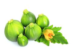 Round courgettes Royalty Free Stock Photography