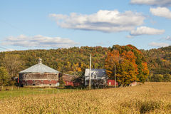 Round Dairy Barn and Corn Field Stock Images