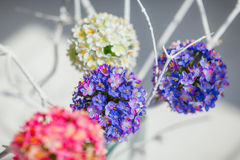 Round decorative flower balls Stock Photography