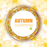 Round decorative frame with golden rim and decorative mosaic. On dotted maple leaves background in pastel. Vector autumn elements for September design. Concept Royalty Free Stock Photography