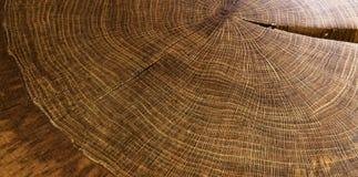 Round drewna rok dzwoni teksturę Zdjęcie Royalty Free
