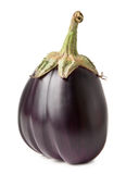 Round eggplant Royalty Free Stock Images