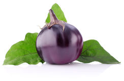 Round eggplant with green leaf Royalty Free Stock Photo