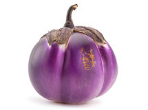 Round eggplant vegetable Stock Images