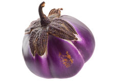 Round eggplant Stock Image