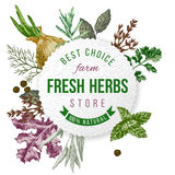 Round emblem with type design, herbs  and spices Royalty Free Stock Photography