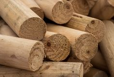 Round Fire Logs. Nice cut round fire logs, cut form pine trees royalty free stock photo