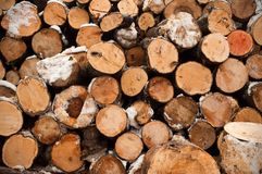 Round firewood for the winter, stacks of firewood, pile of firewood stock images