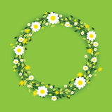 Round floral daisy pattern Royalty Free Stock Photos
