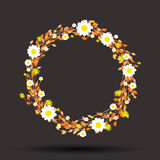 Round floral daisy pattern Stock Photo