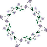 Round floral frame with flowers Royalty Free Stock Image