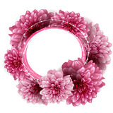 Round floral frame made of peony flowers Stock Photos