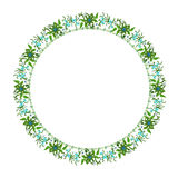Round floral ornament on a white background Stock Image