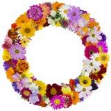 Round floral summer frame Stock Images