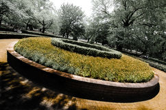 Round Flower Bed Royalty Free Stock Photo