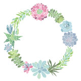 Round flower wreath with succulents. Vector illustration with space for text. May be an invitation, greeting card, or element. The wreath of succulents. Festive Royalty Free Stock Image