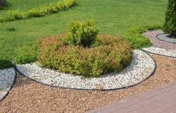 Round flowerbed on the green lawn Stock Image