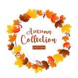 Round frame of autumn leaves Stock Photo