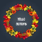 Round frame of autumn leaves Stock Image