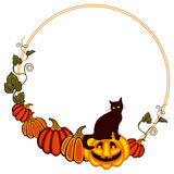 Round frame with a black cat sitting up on the pumpkin. Stock Photography