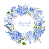Round frame of blue hydrangea and other flowers. Stock Images