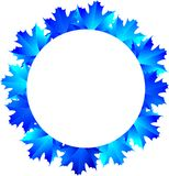 Round frame of the blue maple leaves Royalty Free Stock Images