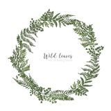 Round frame, border or circular wreath made of beautiful ferns, wild herbs or green herbaceous plants isolated on white. Background. Herbal backdrop or border stock illustration