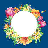 Round frame with branches purple protea, plumeria, strelitzia and hibiscus tropical flowers. Hand drawn watercolor painting on blue background Stock Images