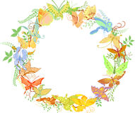 Round frame from butterflies and plants Royalty Free Stock Image