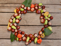 Round frame of chestnuts on a wooden surface. Autumn seasonal background. Stock Photo
